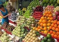 display buah impor